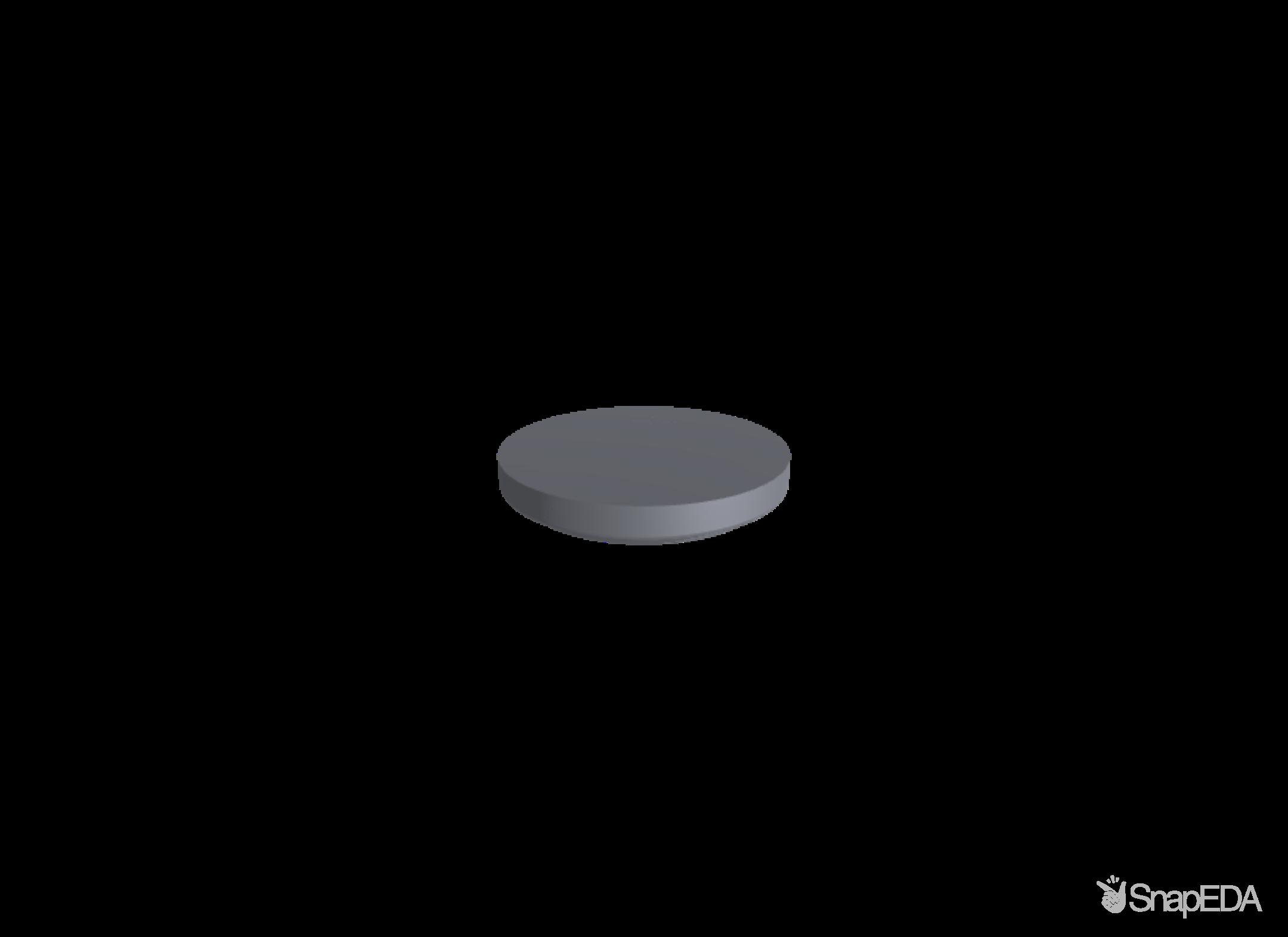 CR2032 3D Model