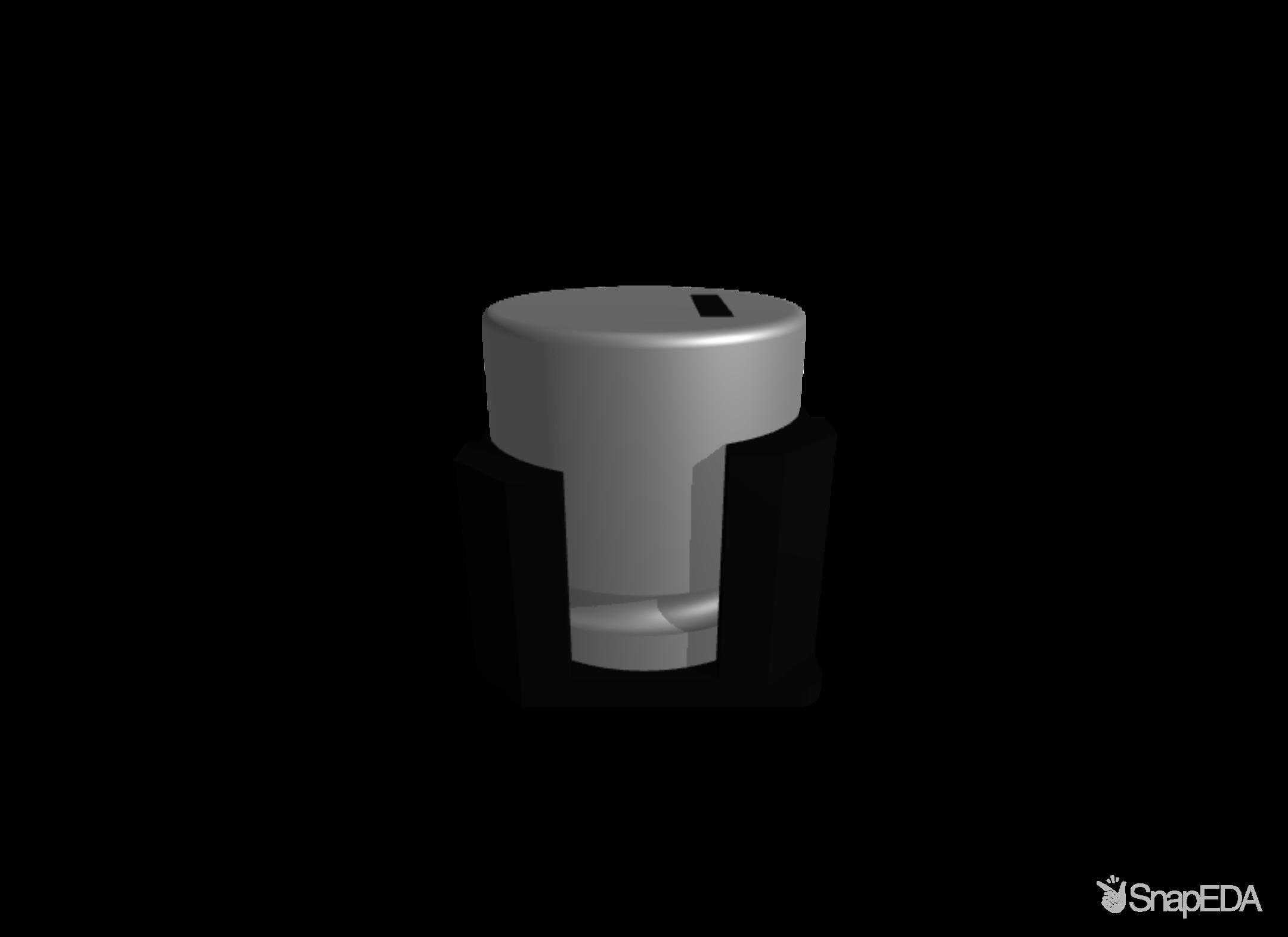 EEEFK1V471AV 3D Model