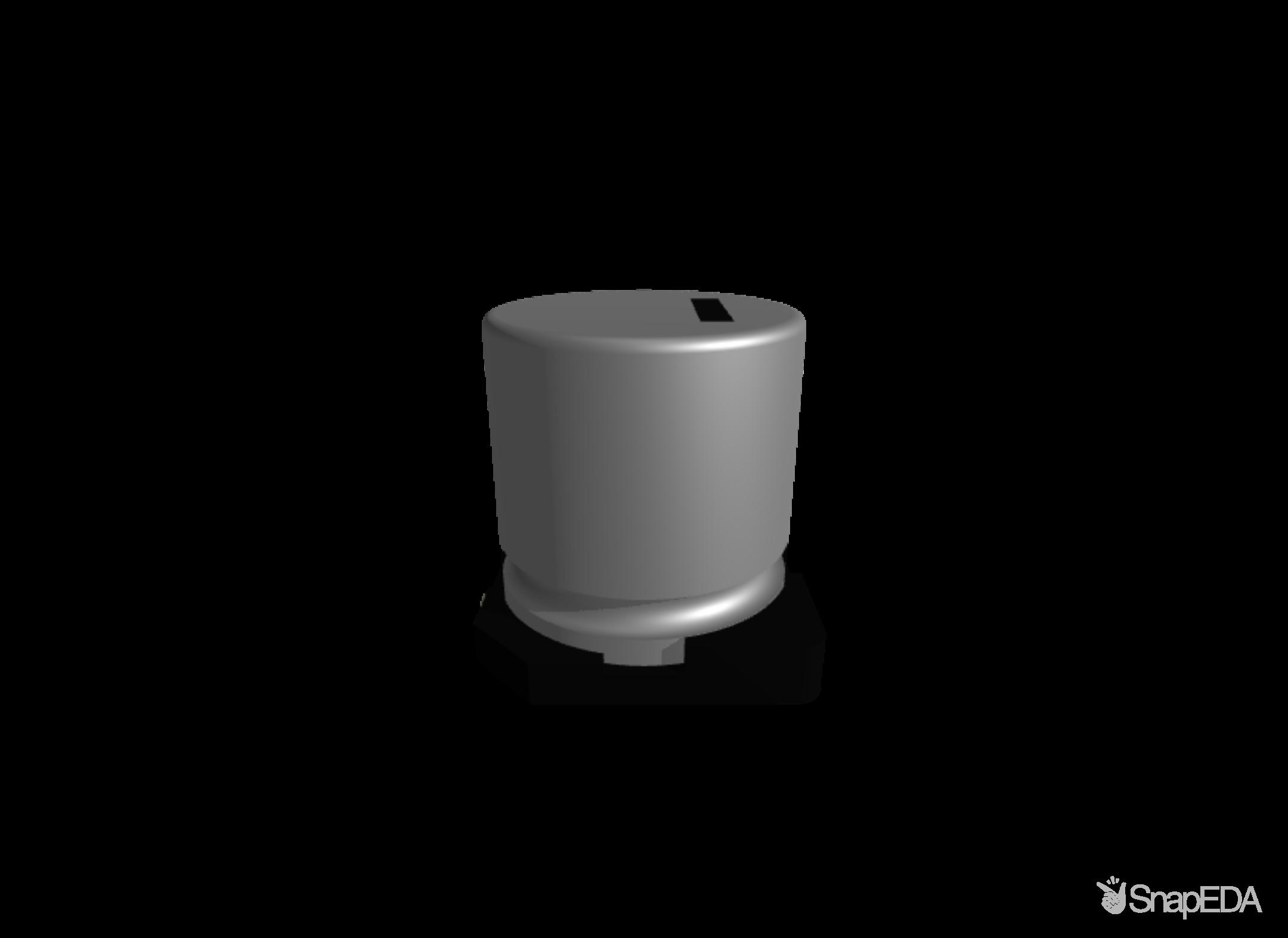 EEVTG1H221Q 3D Model