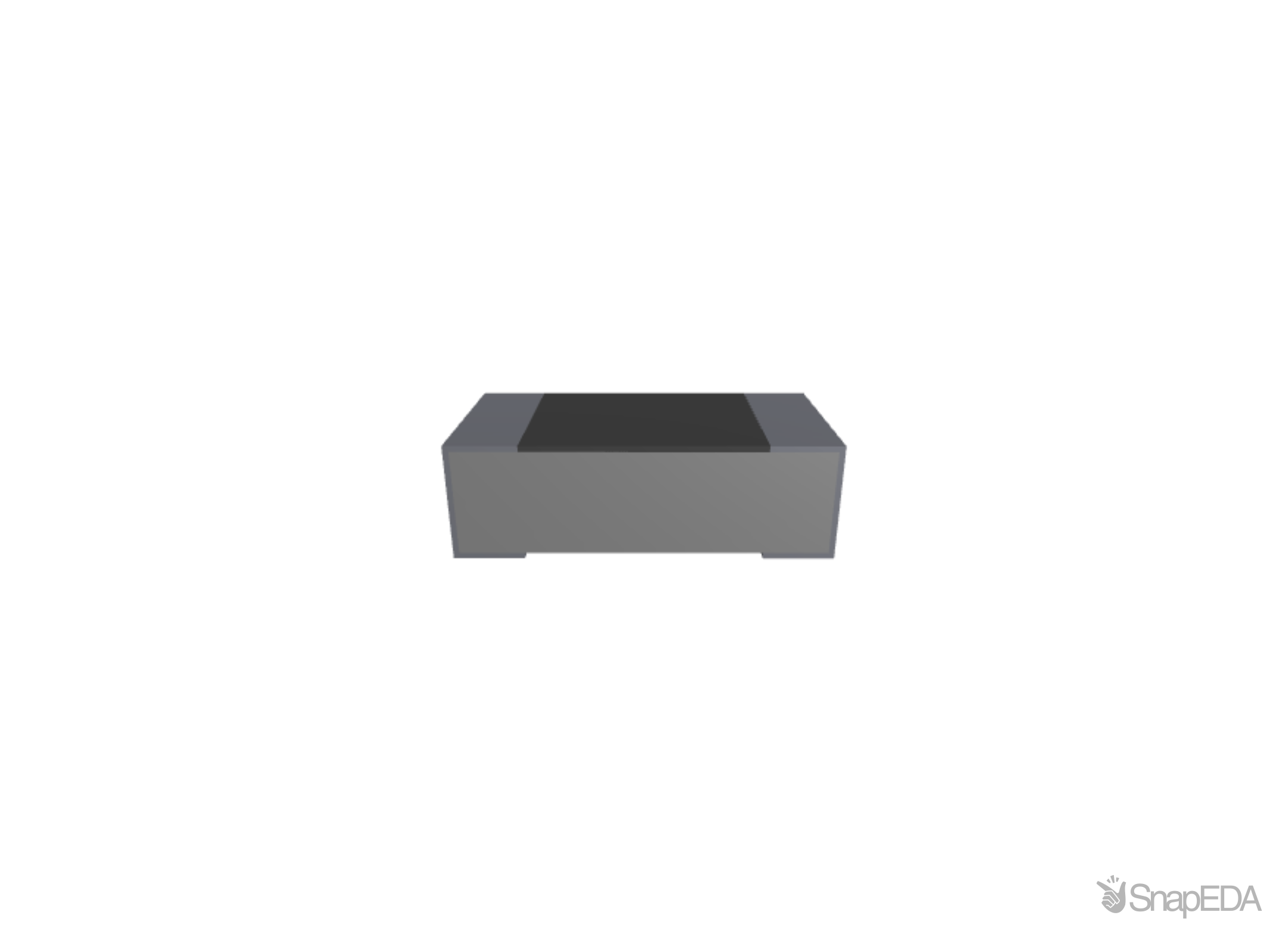 RG1608P-101-B-T5 3D Model